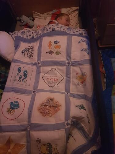 Photo of Tyler Rs quilt