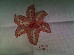 Cross stitch square for Sophie R's quilt
