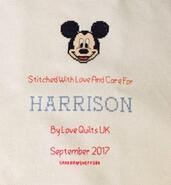 Cross stitch square for Harrison U's quilt
