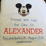 Cross stitch square for Alexander J's quilt