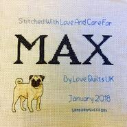 Cross stitch square for Max B's quilt