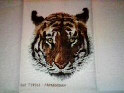 Cross stitch square for Ami-Grace's quilt