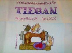 Cross stitch square for Tiegan G's quilt